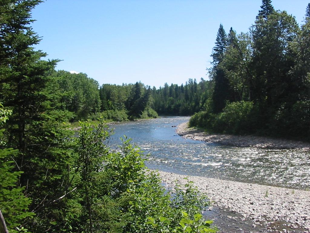 Chapitre 5 - la rivière